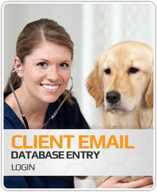 Lovet - Client Email Database Entry