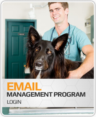 Lovet - Email Management Program